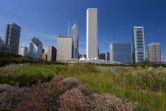 парк тысячелетия Стоковое Изображение RF