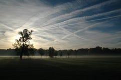 парк утра стоковая фотография rf