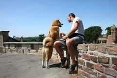 Парк человека и собаки публично Стоковые Фото