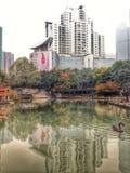 Парк Шанхая Xujiahui Стоковая Фотография RF
