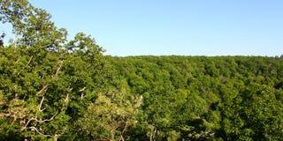 Парк штата Алабама Monte Sano Стоковая Фотография