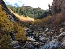 Парк штата горы Уосата Стоковые Изображения