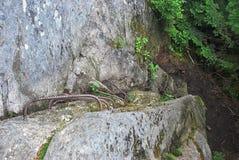 Парк штата зазубрины Grafton в Мейне Стоковое Изображение