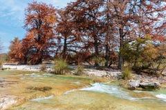 Парк штата запасати реки Frio в Техасе Стоковые Фотографии RF