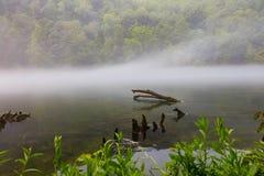 Парк штата запруды Norris Стоковое фото RF