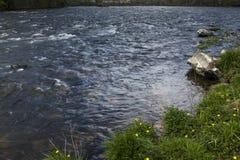 Парк штата мелководиь явора, Elizabethton, TN Стоковое Изображение RF