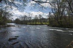 Парк штата мелководиь явора, Elizabethton, TN Стоковые Фотографии RF