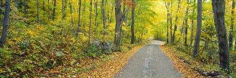 Парк штата ручейка Македония, Стоковые Изображения