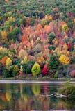 Парк штата Allegheny Стоковые Фотографии RF