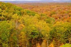 Парк штата Brown County Стоковая Фотография RF