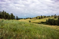 Парк штата Custer, Custer, SD стоковое изображение rf