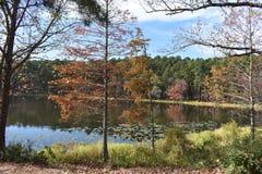 Парк штата Daingerfield в Техасе Стоковое Фото