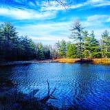 Парк штата Ludington Стоковое Изображение
