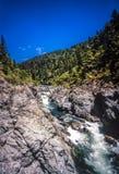 Парк штата Redwoods Jedediah Смита Стоковое Фото
