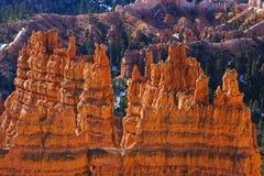 парк Юта каньона bryce nat Стоковое фото RF