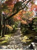 Парк Японии стоковые изображения