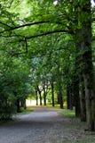Парк 004 Стоковая Фотография RF