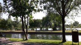 Парк Стоковые Фото