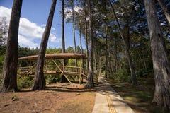 Парк Arvi популярное туристское назначение в Medellin Колумбии стоковые изображения rf