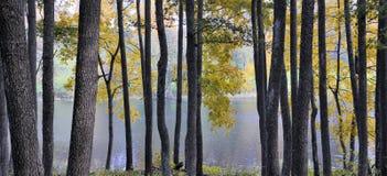 Парк Asveja региональный Стоковая Фотография RF