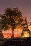парк ayutthaya исторический Стоковые Фото