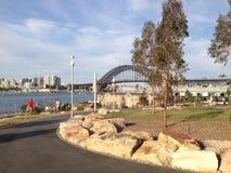 Парк Barrangaroo, гавань Сиднея Стоковая Фотография