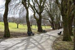 парк birmingham стоковые фотографии rf