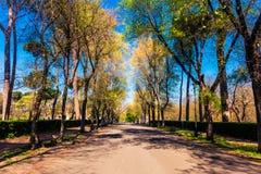Парк Borghese в Риме Стоковая Фотография