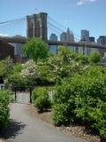парк brooklyn моста стоковое изображение rf