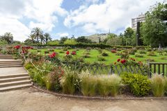 Парк Cervantes, розарий, Барселона Стоковое Фото