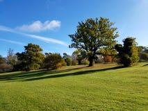 Парк Enfield Стоковая Фотография RF
