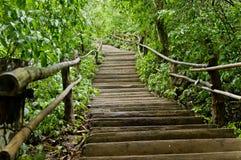 Парк Erawan естественный Стоковые Фото