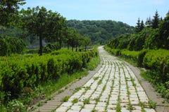 Парк Feofania стоковое изображение