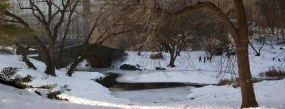 парк gapstow моста центральный Стоковые Фотографии RF