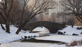 парк gapstow моста центральный Стоковое фото RF