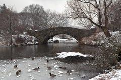 парк gapstow моста центральный Стоковая Фотография