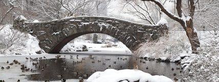 парк gapstow моста центральный Стоковое Изображение