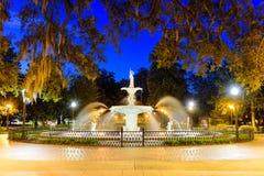 Парк Georgia саванны Стоковое Изображение