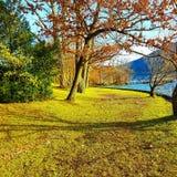 Парк Gmunden Toscana Стоковые Фото