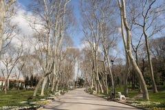 Парк Gulhane, Стамбул, Турция Стоковое фото RF