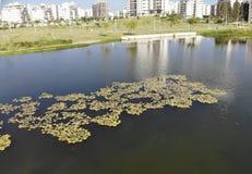 Парк Hadera Ecko Стоковая Фотография