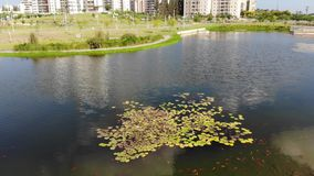 Парк Hadera Ecko сток-видео