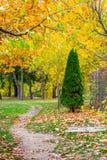 Парк Herastrau в Бухаресте, Румынии стоковое фото