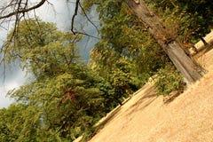 парк hyde london стоковое изображение