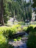 парк lassen озера Стоковое Изображение RF