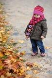 парк llittle младенца осени Стоковая Фотография RF