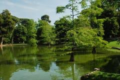 парк madrid озера Стоковое Изображение