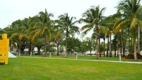 Парк Miami Beach Collins акции видеоматериалы