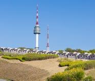 Парк Namsan и башня n Сеула Стоковое Фото