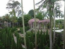 Парк Nong Nooch Стоковое Изображение